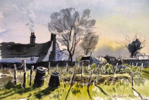 whittlesford-allotments1