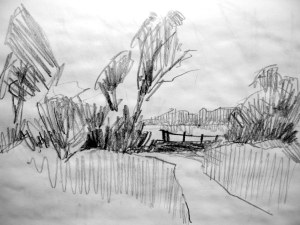 In Milton Country Park -pencil