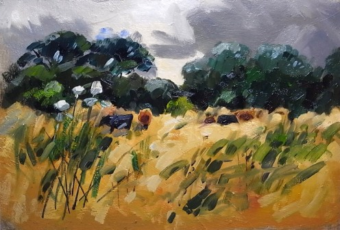 "Pasture at Dry Drayton 8""x12"" - oil"